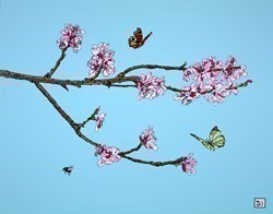 Peach Blossom and Butterflies by Dylan Izaak -  sized 28x22 inches. Available from Whitewall Galleries